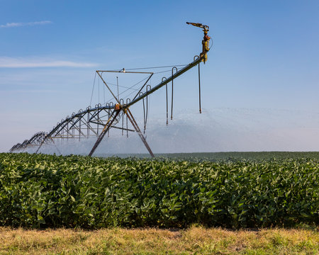 closeup of center pivot irrigation system spraying water on soybean farm field. Hot dry weather and little rain is creating drought like conditions in parts of Illinois