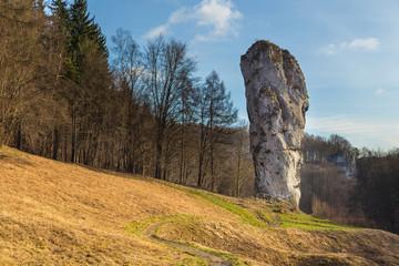 Fototapeta Maczuga Herkulesa, tall limestone stack, Suloszowa, Poland. obraz