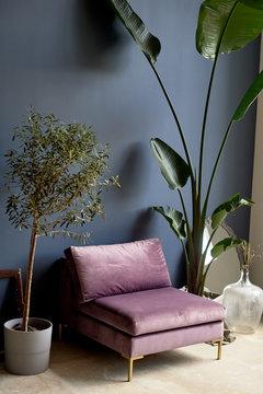 Purple chair against a dark blue wall. Plants in tubs.