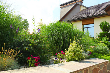 Landscape with modern house and beautiful garden on sunny day Wall mural