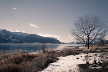 Frozen Autumn Lake with Snow