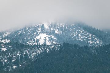 Foggy Mountain-top in Winter