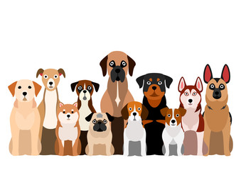 brownish dogs group