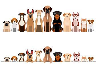 set of brownish dogs border set