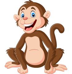 Photo sur Plexiglas Magie Cute baby monkey sitting on white background