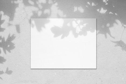 Empty white horizontal rectangle poster mockup with soft shadow on neutral light grey concrete wall background. Flat lay, top view