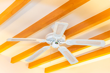 Electric ceiling fan decoration interior of room