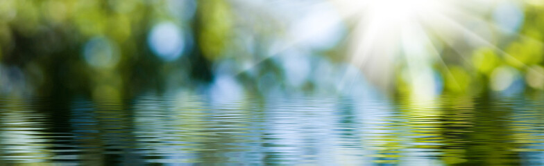 blurred image of natural background from water and plants Fotomurales