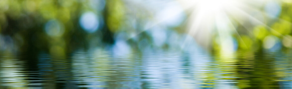 blurred image of natural background from water and plants