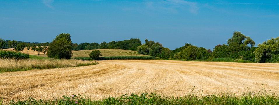 meadow landscape of Betschdorf, France
