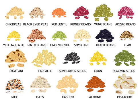 Set of hand drawn handful of beans, legumes, seeds and nuts