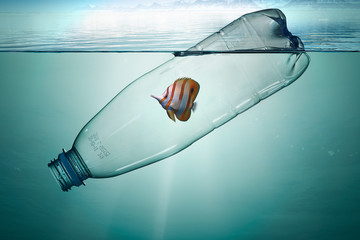 Plastic bottle with fish, pollution that floats in the ocean Wall mural