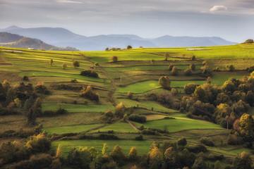 Obraz Beskid Sądecki - Karpaty Góry - fototapety do salonu