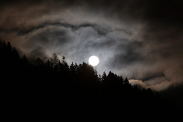 Full Moon in cloudy sky with trees