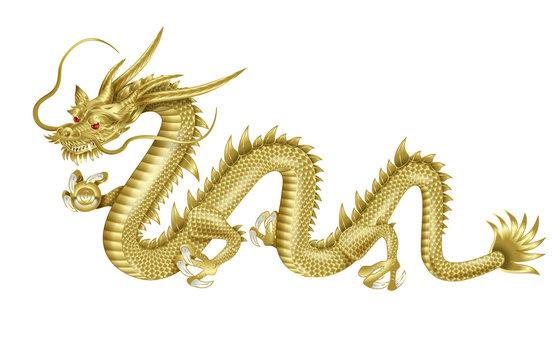 龍神のイラスト