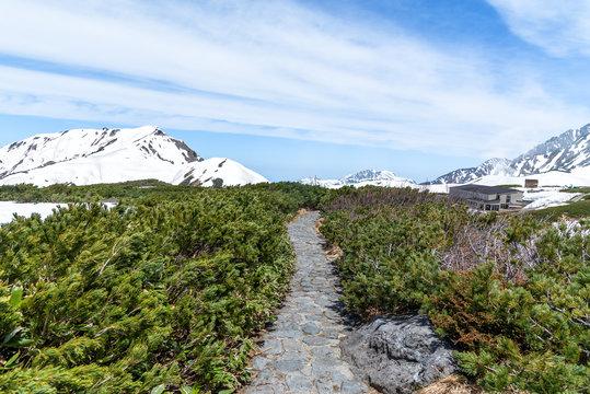 Nature trail at Murodo on Tateyama Kurobe Alpine Route.