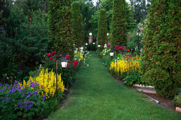 Beautiful flowers and trees landscape in the botanical garden in beauty summer evening. Horizontal orientation