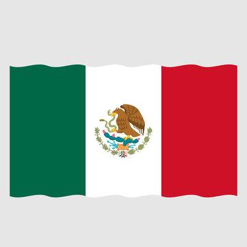 Waving flag of Mexico, vector mexican symbol