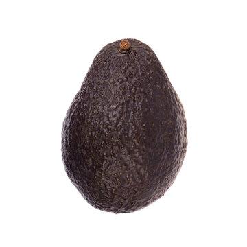 black avocado isolated on white background
