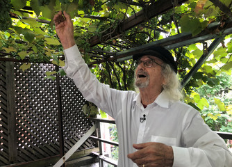 Vintner and retired engineering professor Latif Jiji shows grapevines on his rooftop at his home on the Upper East Side in New York City