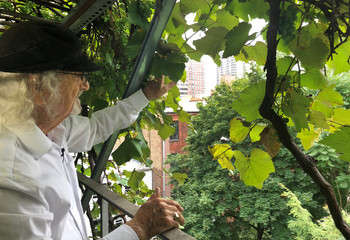 Vintner and retired engineering professor Latif Jiji shows the view from his rooftop surrounded by grapevines at his home on the Upper East Side in New York City