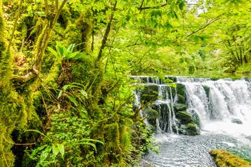 Wasserfall im Jura