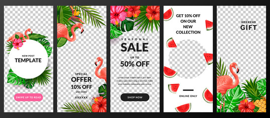 Stories, news or new post vector template for social network. Story background with tropical palm leaves and flamingo.