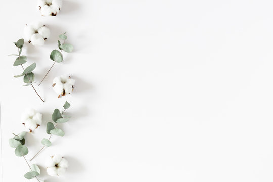 Flowers creative composition. Cotton flowers, eucalyptus branches and leaves on white background. Flat lay, top view, copy space