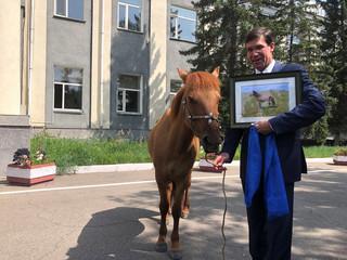 U.S. Secretary of Defense Mark Esper is gifted a horse in Ulan Bator, Mongolia