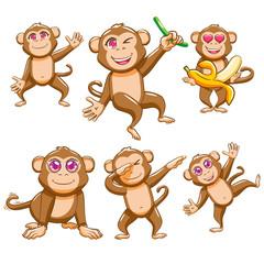 monkey vector graphic clipart design