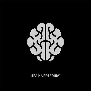 white brain upper view vector icon on black background. modern flat brain upper view from human body parts concept vector sign symbol can be use for web, mobile and logo.