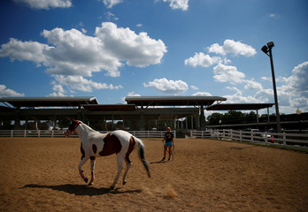 A girl runs a horse as people prepare for the Iowa State Fair in Des Moines