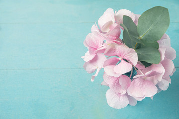 Papiers peints Hortensia Pink hydrangea flower with a branch of eucalyptus leaves in a vase on a blue wooden table, copy space, top view.