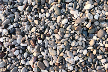 Wall Mural - Pebble background