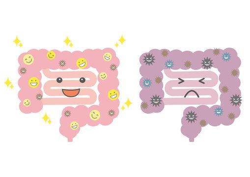 腸活イラスト(綺麗な腸と汚い腸)