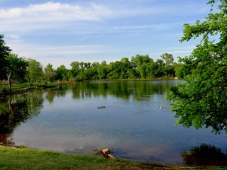 Beautiful day at the lake with ducks swimming in the distance