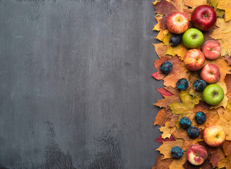 Wall Mural - Seasonal autumn background. Frame of colorful maple leaves, grapes, peaches, nectarines, plums and apples.