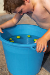 Young boy Bobbing For Apples