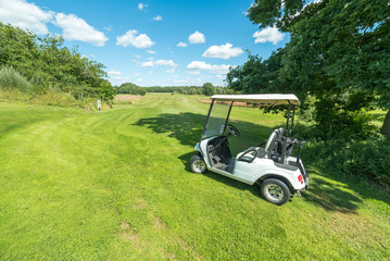 Summer Swedish golf course with golf cart