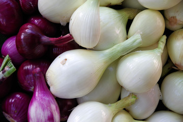 Close-up full frame view of a variety of red and white large organic onions displayed at a market stand