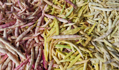 Close-up full frame view of a variety of organic beans displayed at a market stand