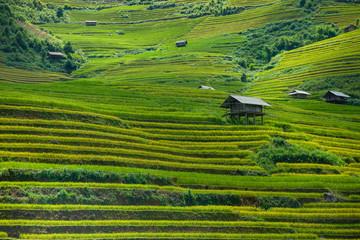 Beautiful rice paddy fields during trip HANOI to SAPA at Mu Cang Chai, YenBai, Vietnam. at Northwest Vietnam.Vietnam landscapes.
