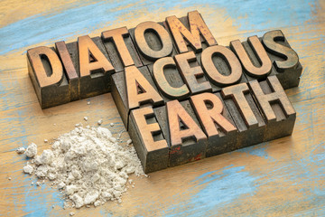 food grade diatomaceous earth supplement