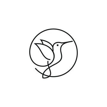 Hummingbird Logo Design Line Art Stock Vector