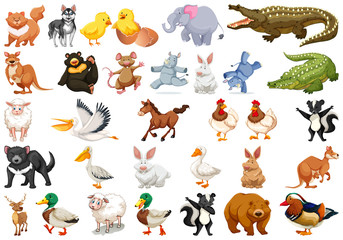 Diverse set of isolated animals on white