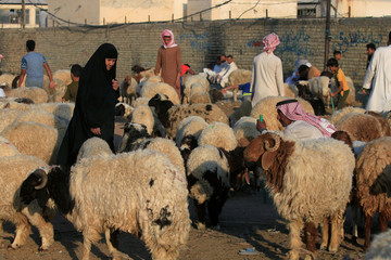 An Iraqi woman is seen at a livestock market where people buy sacrificial animals ahead of the Eid al-Adha celebrations in Najaf