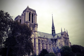 Vintage View of Basilica of Notre Dame the Paris before the Fire