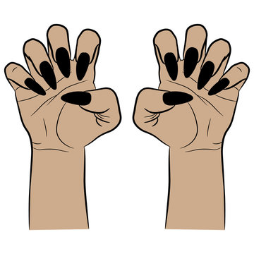 Two female hands with clenched fingers and long black nails in aggressive gesture. Cartoon style. Isolated vector illustration. Halloween motif.