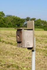 A close side view of a wood birdhouse box.