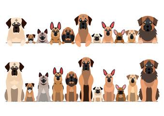 border set of black muzzle dogs